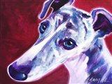 Greyhound - Myrtle Art Print