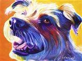 Wire Hair Terrier - Penny Art Print