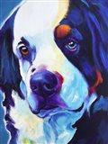 Bernese Mountain Dog - Zeke Art Print