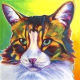 Cat - Tabby Art Print