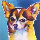 Chihuahua - Honey Art Print