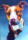 Pit Bull - Bentley Art Print