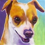 Chihuahua - Duncan Art Print