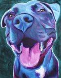 Pit Bull - Sky Blue Art Print