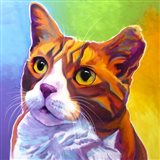 Cat - Ernie Art Print
