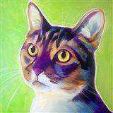 Cat - Ripley Art Print
