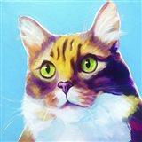 Cat - Willow Art Print