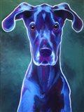 Great Dane - Blue Art Print