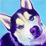 Husky - Dico Art Print