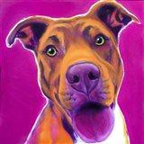 Pit Bull - Bama Art Print