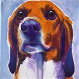 Beagle - Mason Art Print