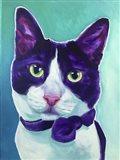 Cat - Sniffles Art Print