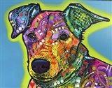 Shamus Art Print