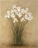 Floral F Art Print