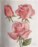 American Classic Rose Art Print