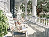 View From the Veranda Art Print