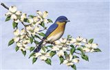 Carolina Blue Art Print