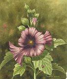 Lady Bug on Hollyhocks Art Print