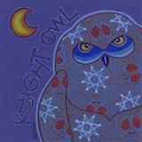Owl I (Snowy Owl) Art Print