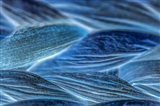 Blue Interconnection 3 Art Print