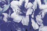 Endless Blue 2 Art Print