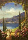 Villa Rosa Art Print
