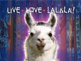 Live Love Lalala Art Print