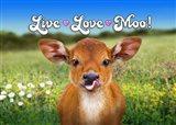 Live Love Moo Art Print