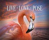 Live Love Pose Art Print