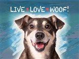 Live Love Woof Art Print