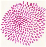 Pink Burst Art Print