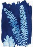 Leaf Silhouette III Art Print
