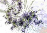 Celestial  copy Art Print