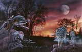 Moonlight Trackers Art Print