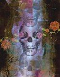Skullminder Art Print