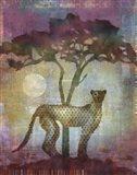Africa Cheetah Art Print