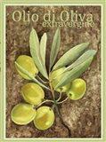 Olio Di Oliva Extravergine Art Print