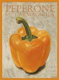 Peperone Di Carmagnola Art Print