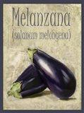 Melanzana Solanum Melongena Art Print