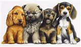 Young Dogs Art Print