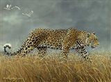 Leopard 2 Art Print