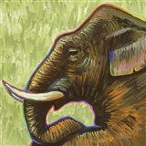 Elephant Pop Profile Art Print