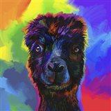 Pop Art - Alpaca Art Print