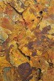 Terra Cotta Art Print