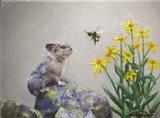 A Pika and a Bumblebee Art Print