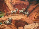 Spirit of the Desert Art Print