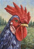 Blue Rooster Art Print