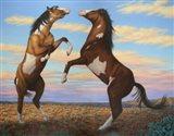 Boxing Horses Art Print