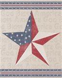 Barn Star Art Print