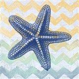 Chevron Star Fish Art Print